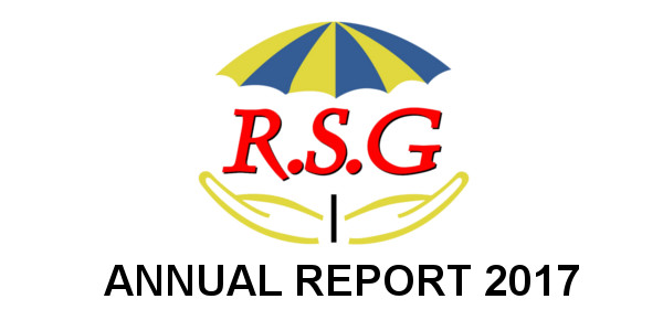 rsg annual report 2017
